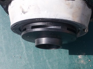 Top view of pump and impeller